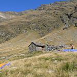 2006 - Volo Alpino
