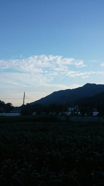 가을날씨가 가득한 여름아침