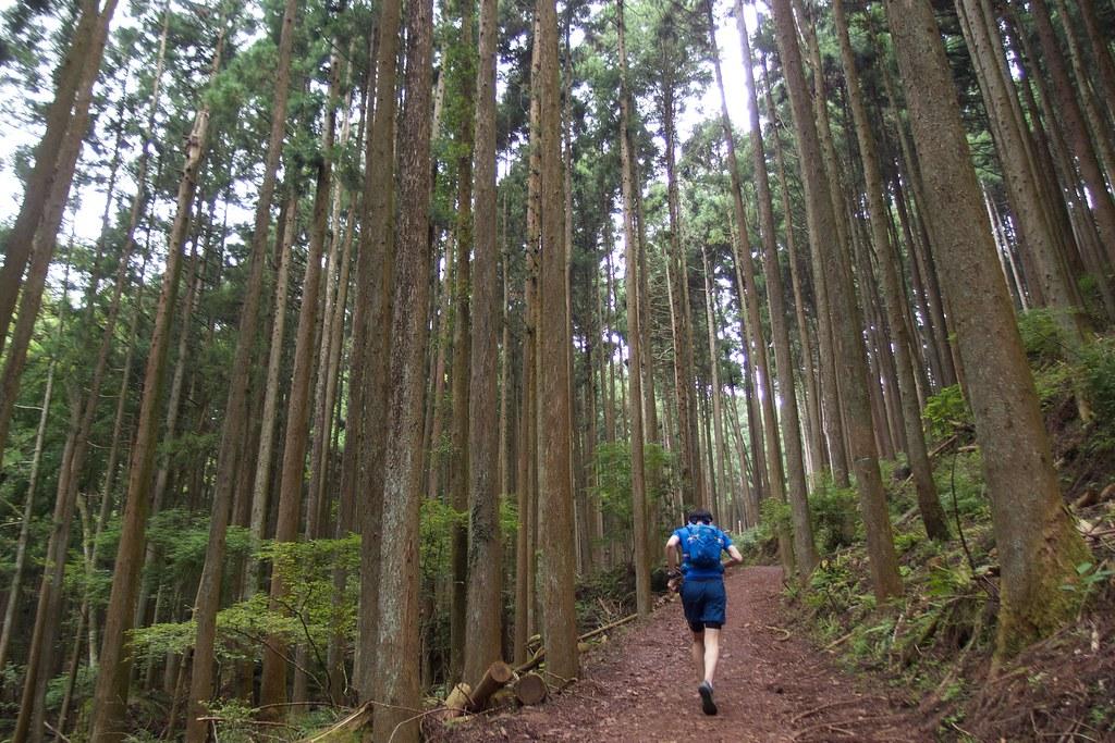20170723_Mt.Izugayake 002