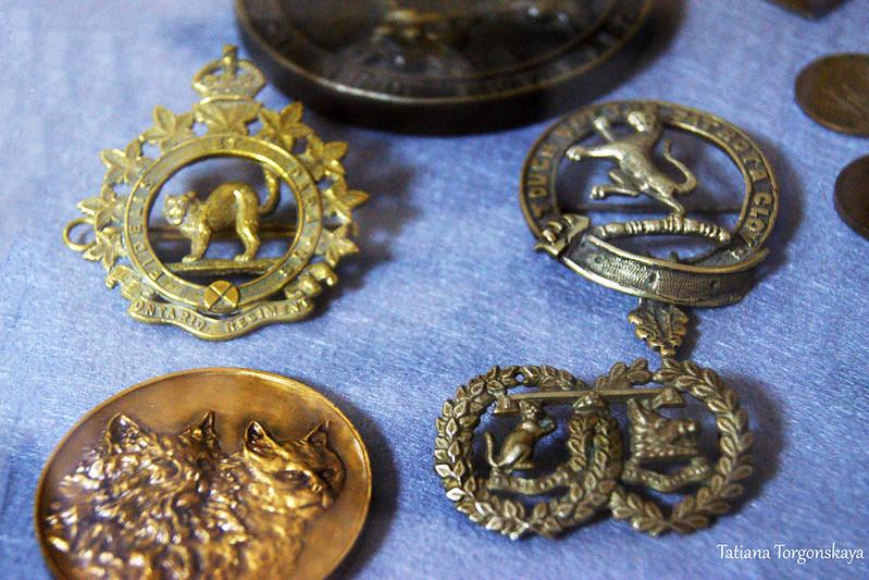 Монеты и медали с кошками
