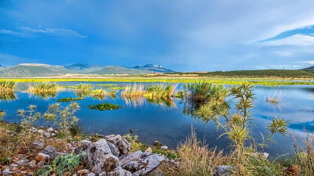 Paralimni Lake.