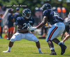 RB- Tarik Cohen (R- North Carolina A&T )
