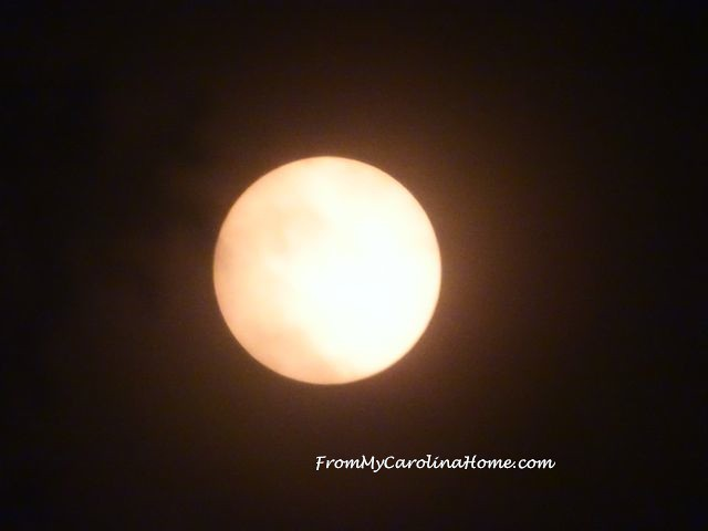 Solar Pictures at From My Carolina Home