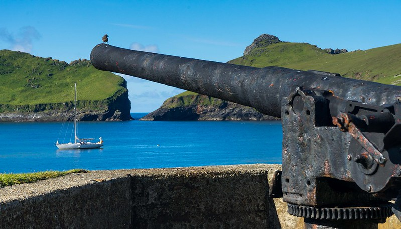 WW1 gun with St Kilda wren