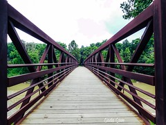 Bridge at Chagrin River Park