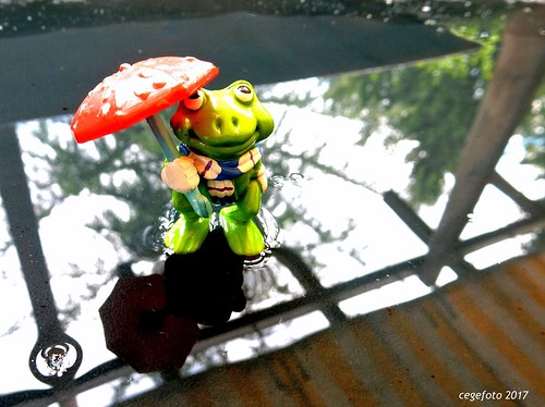 ...Rain...