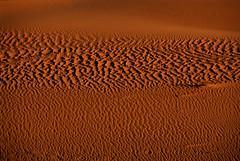 rughe di sabbia al tramonto