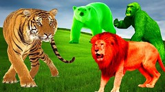 Colors Dinosaurs Nursery Rhymes | Wild Animals Attack | Learning Colors Video for Children Toddler