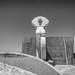tazacorte monolith