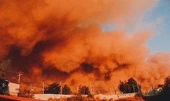 Incendio Forestal Febrero, Valparaiso Chile