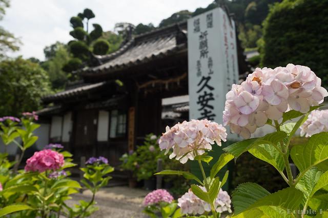 Kyuanji temple 2017.6 (4)