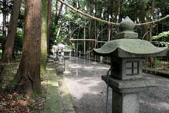 Photo:Worshippers' path (参道) to Niikawa Shrine (新川神社) By Greg Peterson in Japan