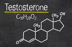 testosterone-molecules-1