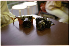 Leica Life #15