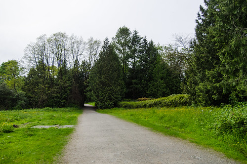 Field near Lake