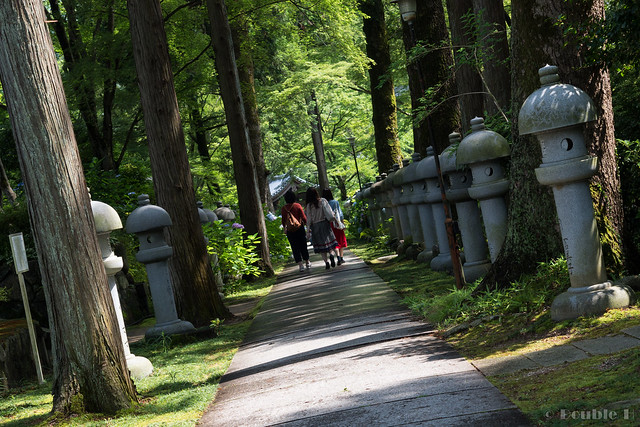 Kyuanji temple 2017.6 (13)