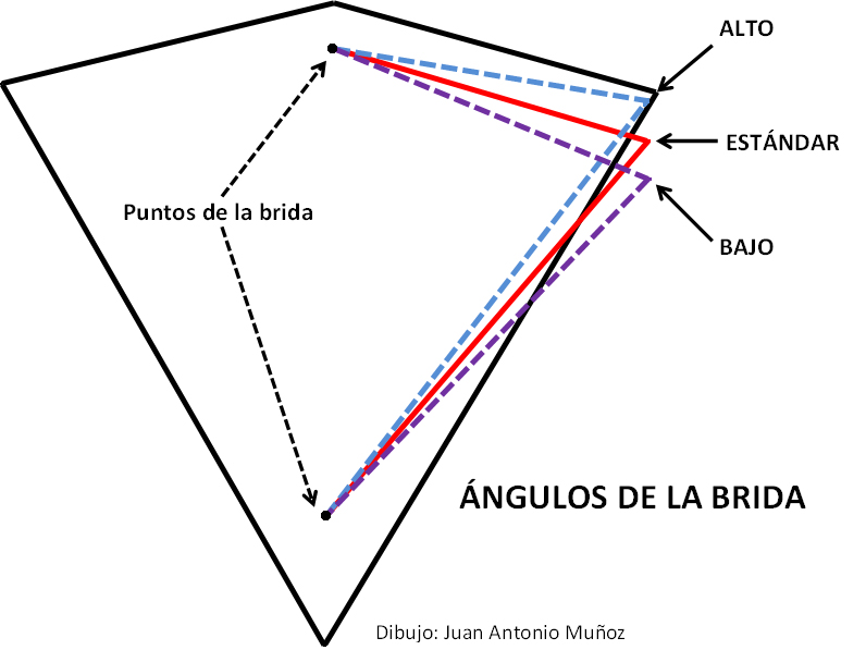 Ángulos de la brida (Dibujo: Juan A. Muñoz)