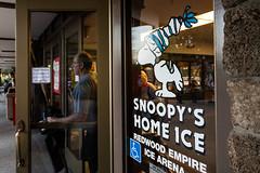 Snoopy 2017 - Random Photos-3