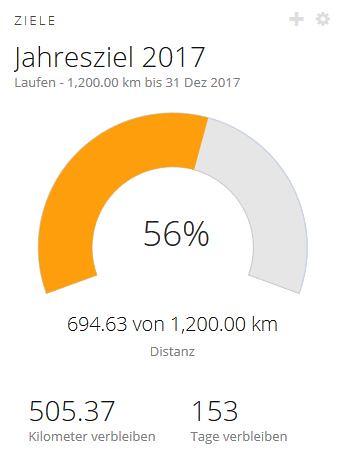 Jahresziel-2017