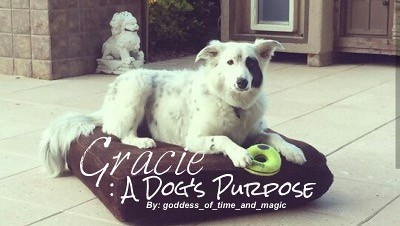 Gracie: A Dog's Purpose - goddess_of_time_and_magic - Ghost Adventures (TV) [Archive of Our Own]