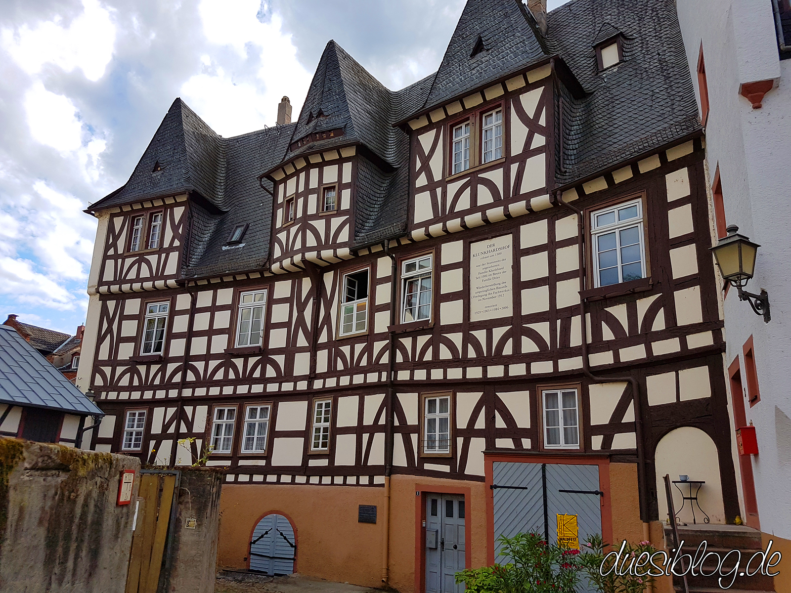 Ruedesheim Rheingau Travelblog duesiblog 034