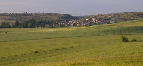 Luzaga