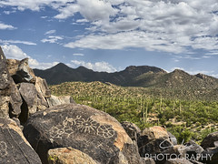 Picture Rocks - Saguaro National Park