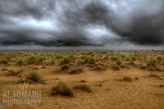 Desert embraces the rain!!