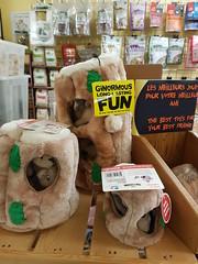 Jouets pour chiens avec de petits écureuils