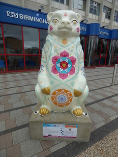 India - The Big Sleuth - Birmingham Women's Hospital