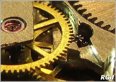 vostok - Ce qu´il y a dedans d´une Vostok Amphibia, avec des photos. 35979548345_e7c493d467