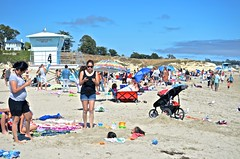 Santa Cruz Beach scene, Boardwalk, ocean and iPhone, buried child,