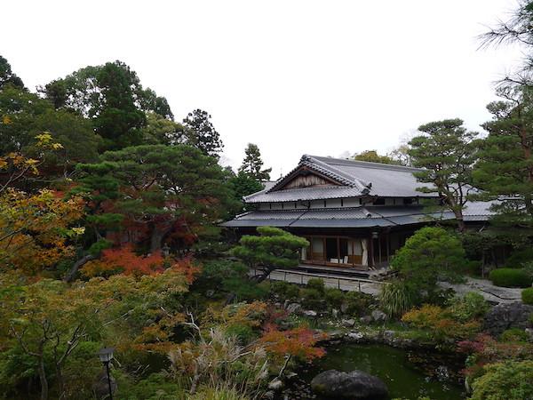 293-Nara