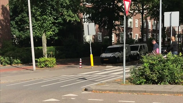 Dutch Simple Unsignalized Crossings