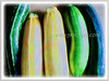 Zucchini (Courgette, Italian Marrow, Summer Squash)