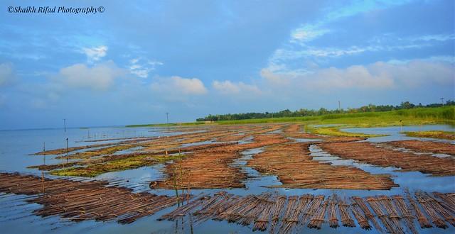 Beautiful Bangladesh | Evening Sky | Blue Sky | Lovely Photo | Nikon D5200 | Follow Me