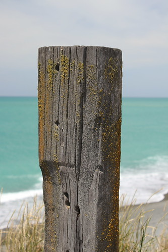 normanby beach timaru south canterbury new zealand scenic landscape fence fencepost post
