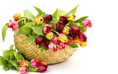Agar Bunga Potong Tak Mudah Layu