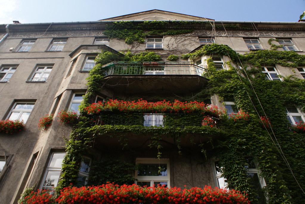 Beaucoup de géraniums pour une façade géométrique de le quartier de Piasek à Cracovie.