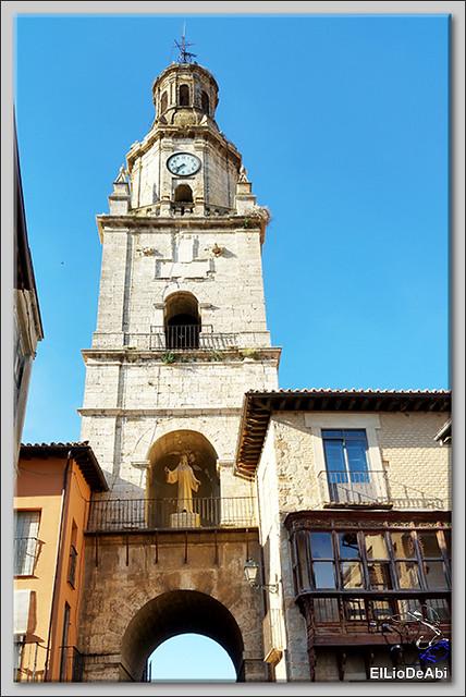 Museo del Vino Pagos del Rey y visita a Toro (25)