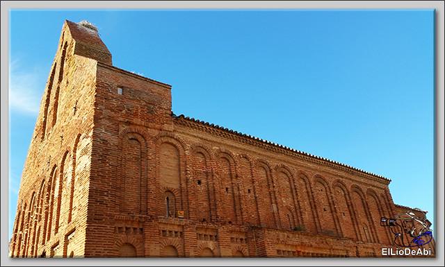 Museo del Vino Pagos del Rey y visita a Toro (21)