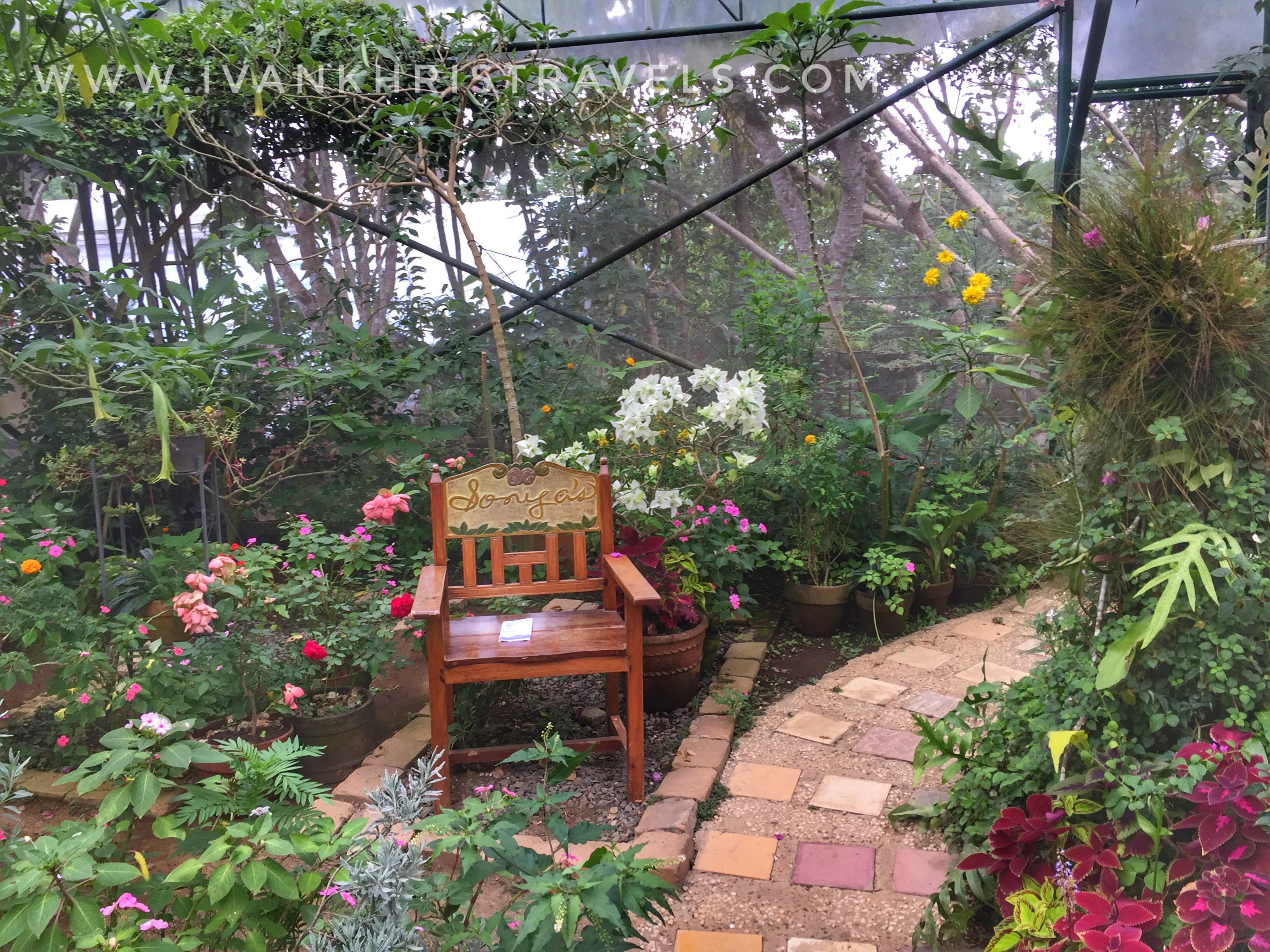 Sonya's Garden chair inside the Proposal Garden