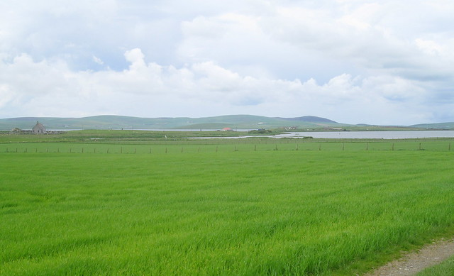 Stones of Stenness and Brodgar from Maeshowe