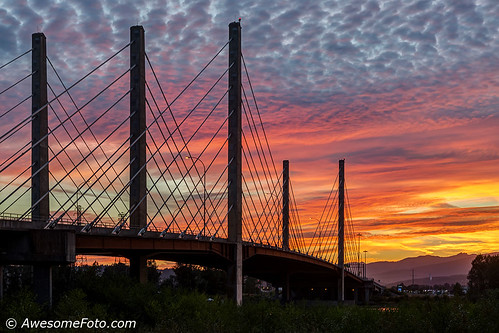 architecture orange yellow pink bridge building cable coast color green grass tree modern outdoors outside piers river shoreline sky steel structure sundown sunset suspension tower water mountain cloud cloudscape glow pittriver pittriverbridge pittmeadows bc britishcolumbia canada transportation nature environment dusk twilight