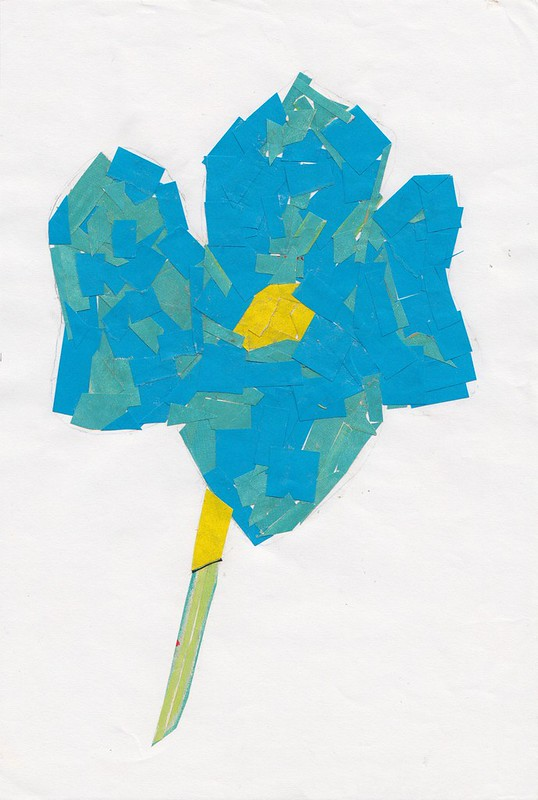 photo blue_flower_collage-crop.jpg