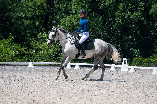 20170709 Grif Dressage Tests-32