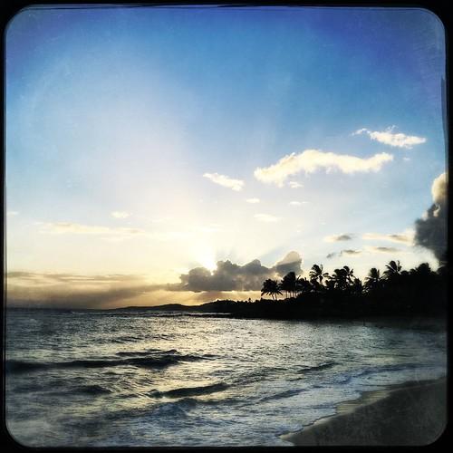 Aloha from Kauai!