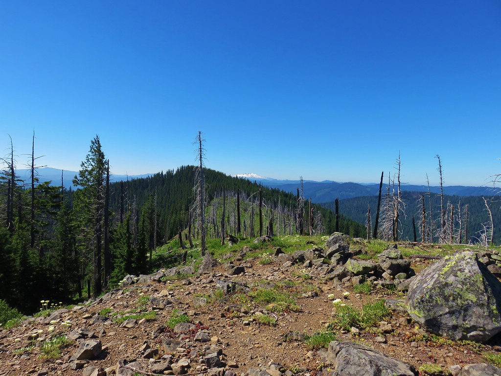 Diamond Peak from Chucksney Mountain