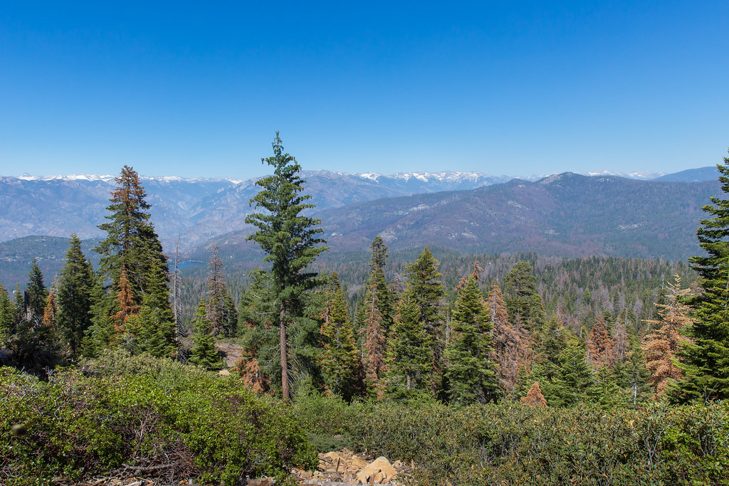 Kings Canyon and Sequoia National Park