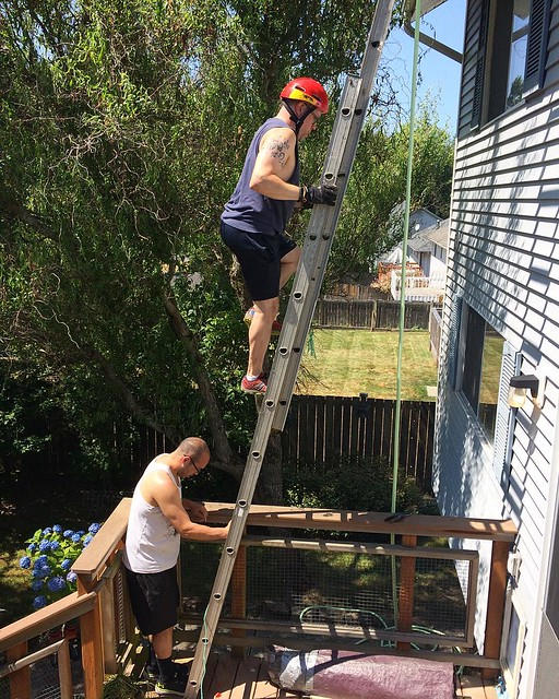 Josh cleaning out the roof gutters with assistance from Anthony while I sit on the back deck with the baby and watch terrifying YouTube videos about Australian spiders.
